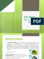 MEDIO AMBIENTE en Mineria y Petroleo