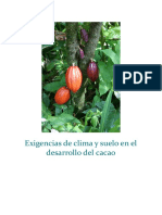 Exigencias de Clima y Suelo en El Desarrollo Del Cacao ING VIGO