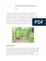 El Bosque Modelo