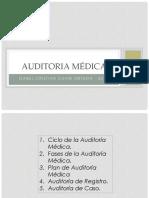 ciclo-auditoria-ev-reg-aud-caso-isabel-chaw-marzo-2017.pptx