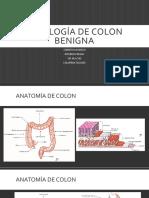Patología de Colon Benigna