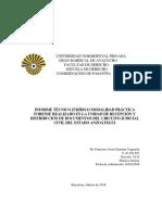 Informe Tecnico Juridico de Practica Forense Urdd Definitivo