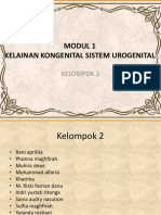 PLENO 1