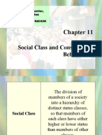Social Class and Consumer Behavior 1224353409137212 8
