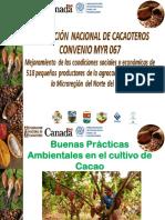 B.P. Ambientales.pdf