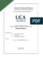 Estructura Del Documento Final Busquedabinaria