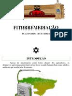 Dr. Leonardo Cruz Caires (Fitorremediação)