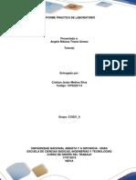 Informe Laboratorio Cistian Medina