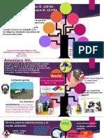 Infograma AMONIACO NH3