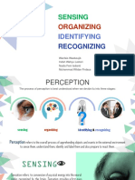 Sensing, Organizing, Identifying and Recognizing