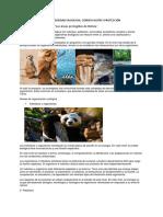 LA BIODIVERSIDAD EN BOLIVIA-1.docx