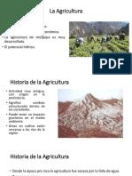 La Agricultura Introduccion