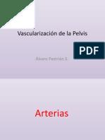 Vascularización de la Pelvis