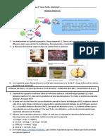 Tp Reacciones Químicas