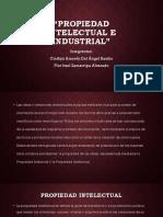 5. Propiedad Intelectual e Industrial