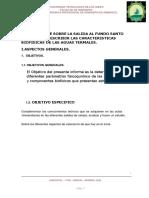Valoracion-informe.docx