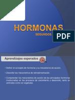 HORMONAS 2°.ppt