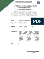INFORME DE  ARTESANÍA.docx
