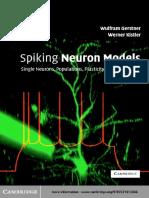 The spiking neuron model