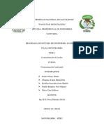 trabajo de contaminacion de suelos.docx