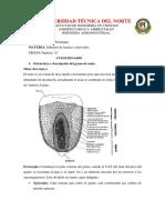 CARRERA DE AGROINDUSTRIA.docx