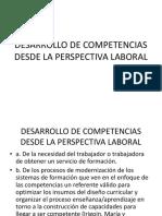 Desarrollo de Competencias Desde La Perspectiva Laboral