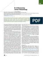 30 Years of NFKB a Blossoming of Relevance to Human Pathobiology