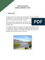 93671529-LAGUNA-SAN-NICOLAS.docx