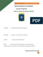 Cruzado Mendoza - Resumenes