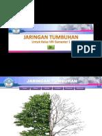 Template PPT jaringan-tumbuhan
