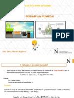 SESION 7- Diseño de humedal.pptx