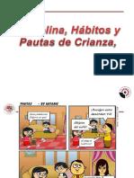 DISCIPLINA HÁBITOS Y PAUTAS DE CRIANZA (2).pptx
