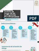 0Gestión de Riesgo de Las Instituciones Microfinancieras