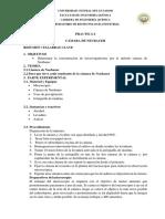 Hoja Guía Práctica 6 Neubauer Mod