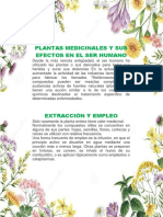 Plantas Medicinales y Sus Efectos en El Ser Humano