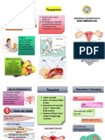 Leaflet Endometriosis