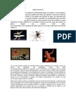 356711306-Danza-Estetica.docx