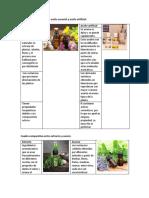 Cuadros Comparativos Comparar Las Caracteristicas de Los Extractos y Las Esencias