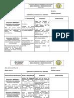 Formato Seguimiento HME (1)