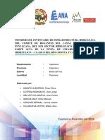 ☻INFORME DE INVENTARIO DE INFRAESTRUCTURA HIDRÁUICA DEL CANAL luichopucro PUYLUCANA