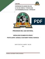 375349197-Procesos-Del-Gas-Natural-Gonzalo-Fiorilo-17-02-18.docx