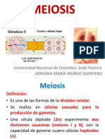 2. MEIOSIS.pdf