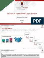 5. Gestion de Un Programa de Auditoria