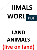 ANIMALS WORLD.pptx