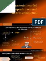 Características del terapeuta en la TREC