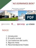 13 Mesones-sueno.pdf