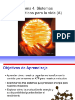 TEMA 4A SISTEMAS ENERGÉTICOS PARA LA VIDA.pdf