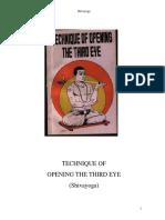 tmp_4011-third-eye-pre(4)-1118170771.pdf