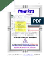Project 2013 N1.pdf
