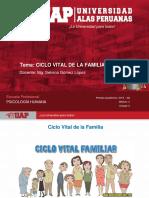 Semana 4 - Ciclo Vital de La Familia(3)